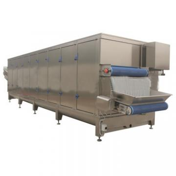 Chinese Cabbage Vacuum Freeze Dryer
