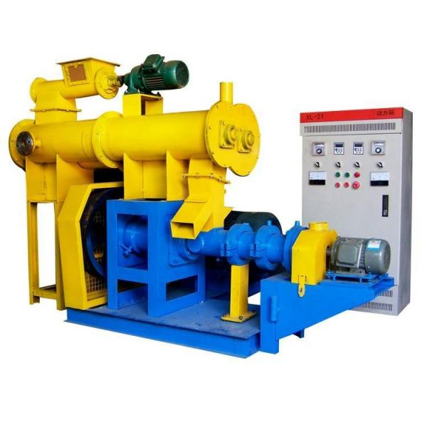 China Cold Feed Pin Rubber Extruder From Professional Manufacturer