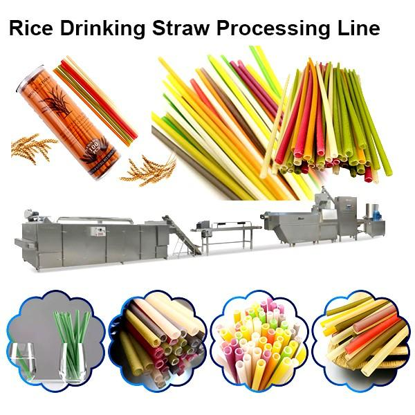 Plastic-Free Eco-Friendly Tapioca Starch Biodegradable Drinking Straw Rice Drinking Straw Producing Making Machine