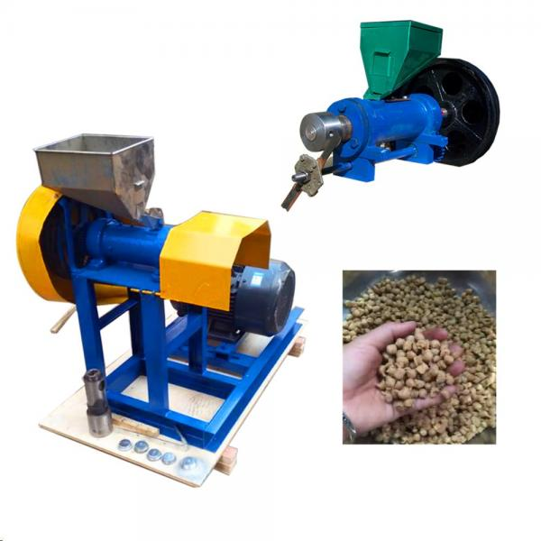 Fish Food Production Line/ Catfish Feed Extruder Application Complete Fish Food Pellet Making Machine