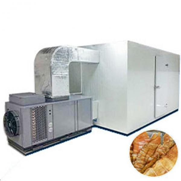 Complete Line Marula Fruit Processing Machine for Pulp and Powder