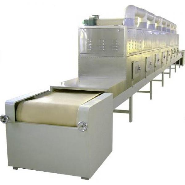 continuous belt dryer machine spray dryer milk powder commercial freeze dryer